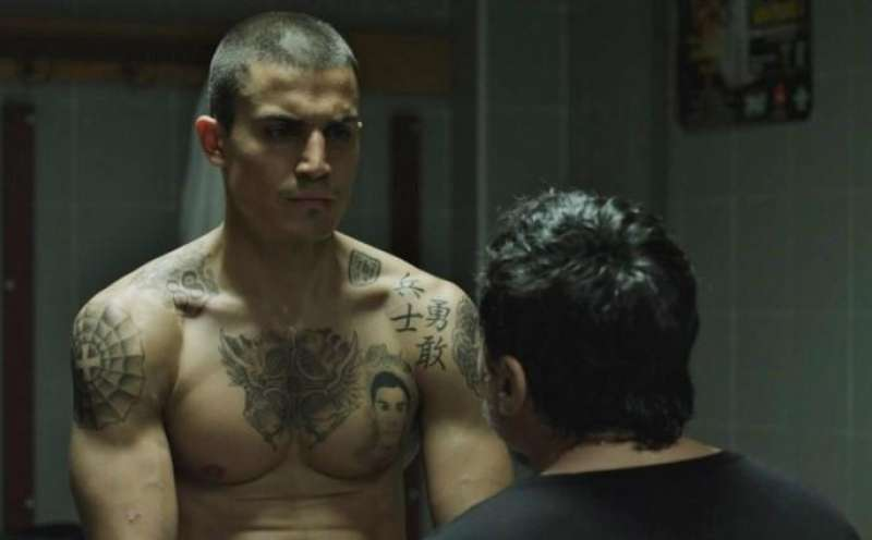 Scorpion: Brother. Skinhead. Fighter. von Santiago Zannou