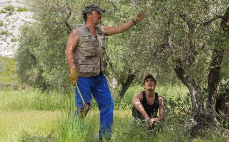 Sommer In Der Provence Trailer