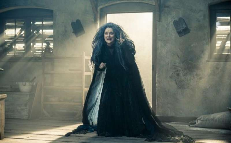 Into the Woods von Rob Marshall