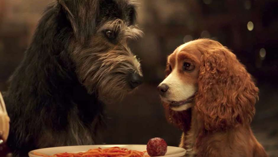 Bild zu Lady and the Tramp von Charlie Bean