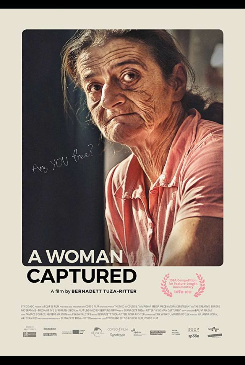 Poster zu A Woman Captured (2917)