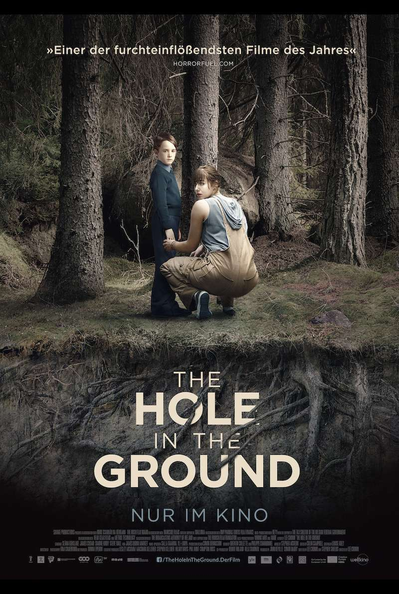 Filmplakat zu The Hole in the Ground (2019)