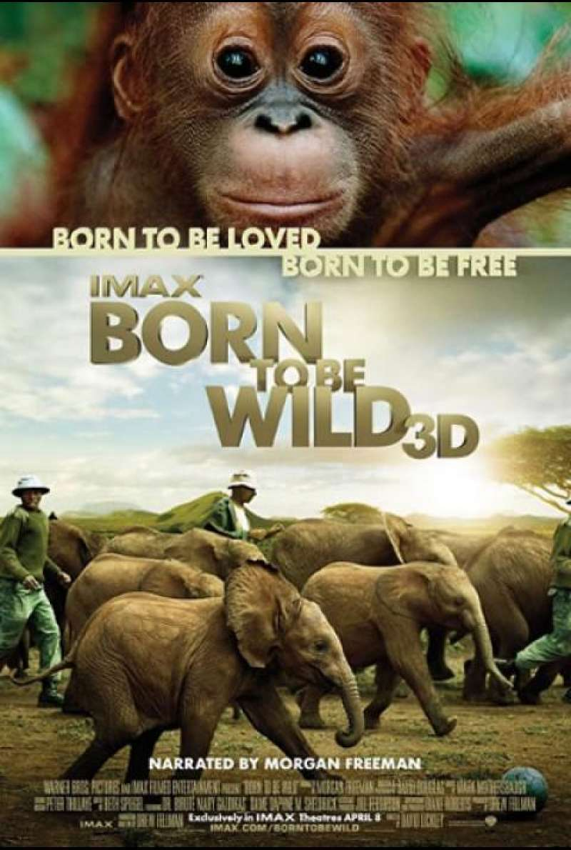 Born To Be Wild - Filmplakat (US)
