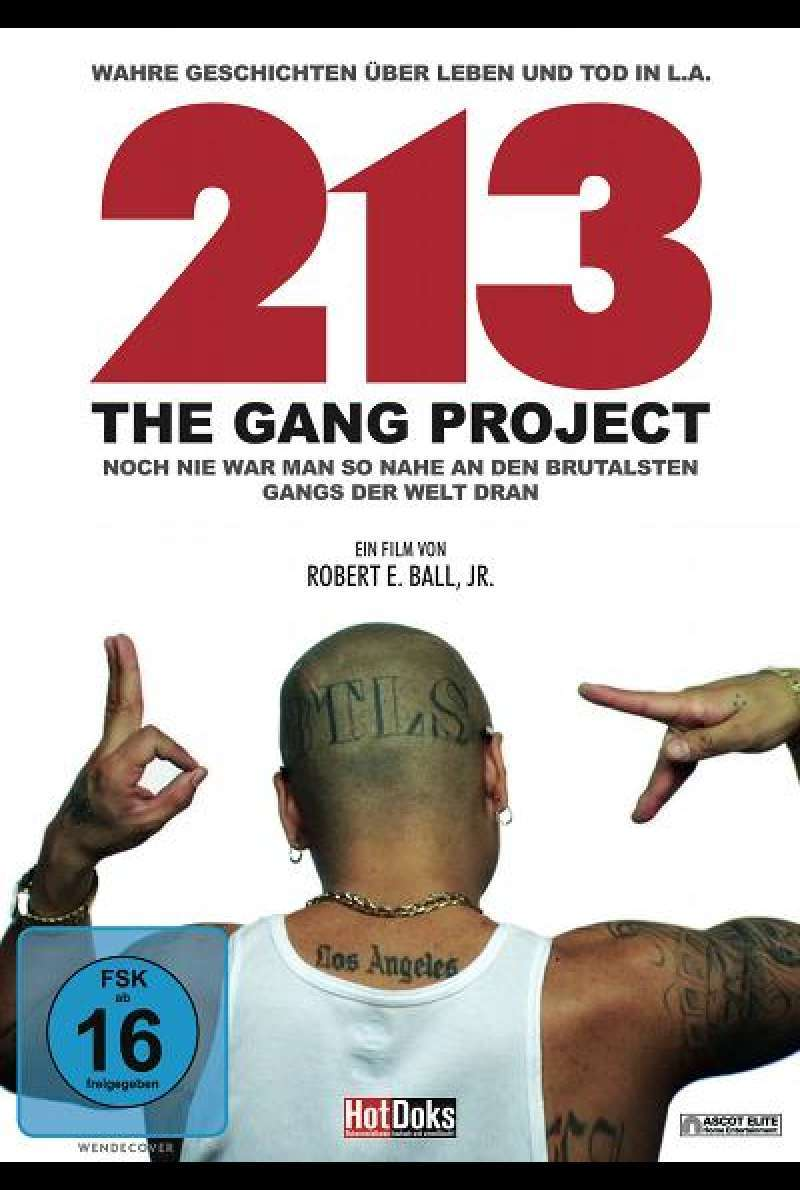 213 - The Gang Project - DVD-Cover