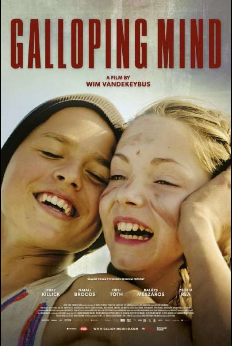 Galloping Mind von Wim Vandeykebus - Filmplakat (BE)