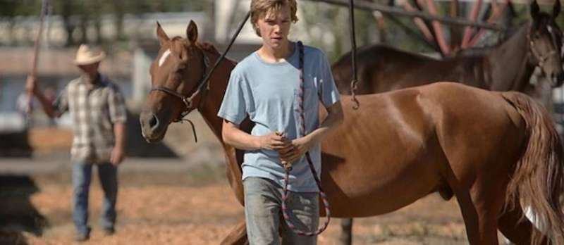 Lean on Pete von Andrew Haigh