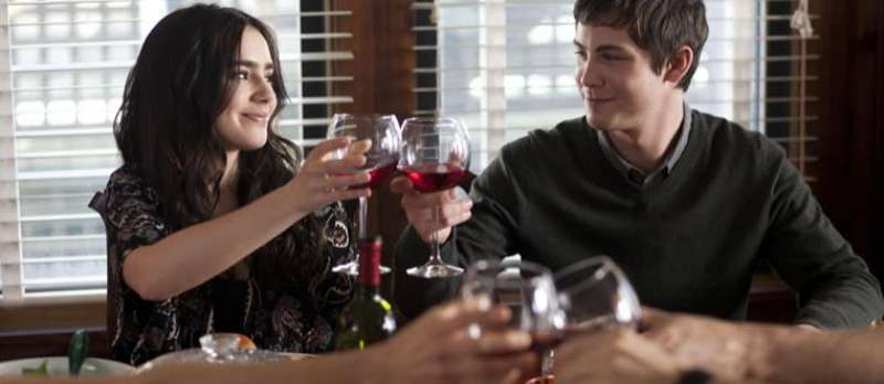 Stuck in Love von Josh Boone