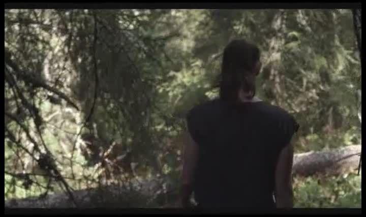 schwarzer panther film