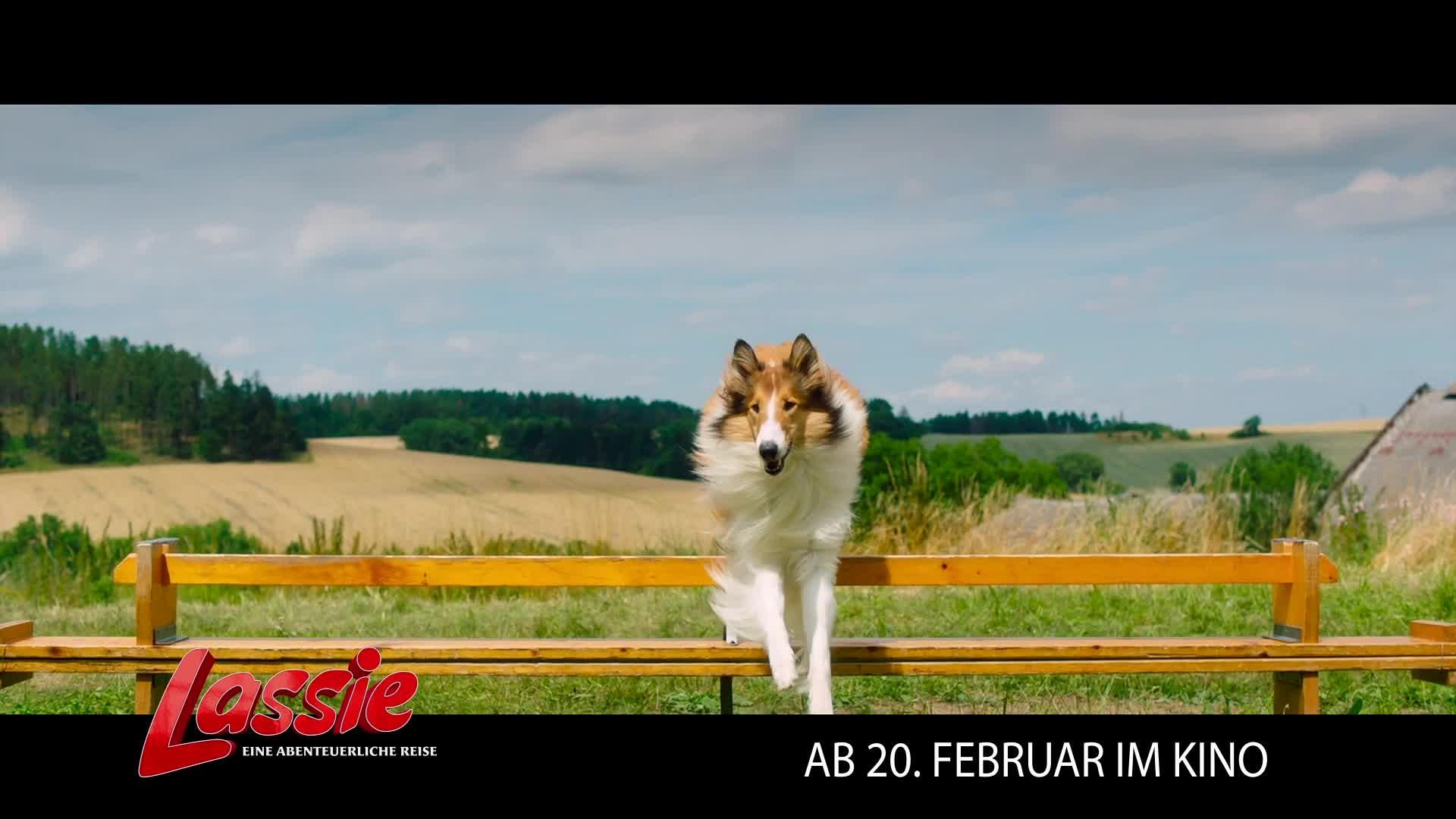 Lassie - Eine abenteuerliche Reise Film ...