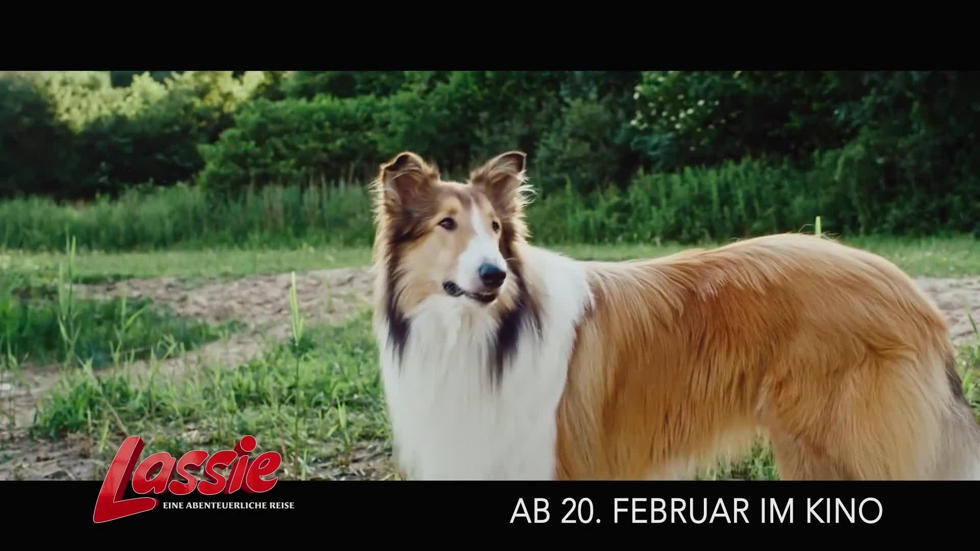 Lassie - Eine abenteuerliche Reise (DVD ...